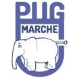 PUG Marche